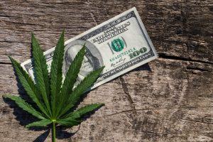 Marijuana-Stocks