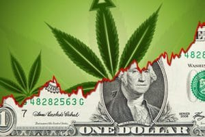 marijuana stocks to watch