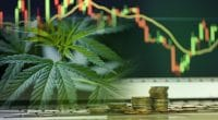 how to buy pot stocks