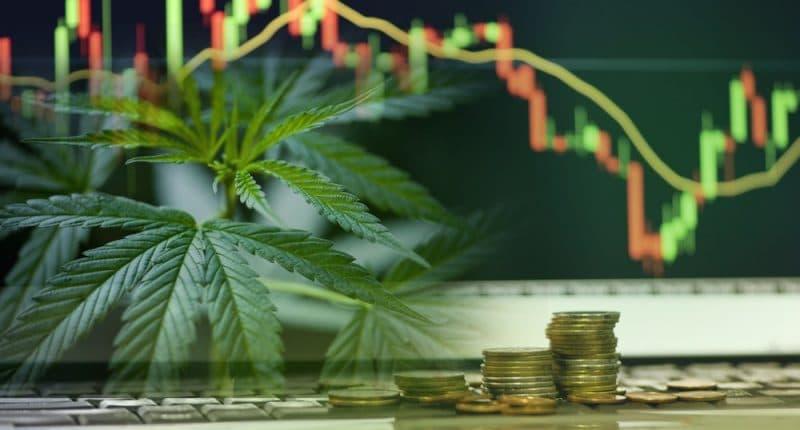 how to buy pot stocks