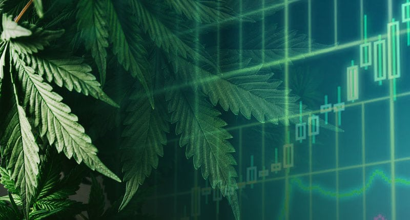 best marijuana stocks to watch