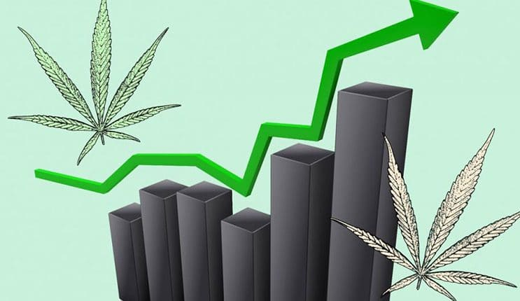 Two Marijuana Stocks To Watch At The End Of June | Marijuana Stocks |  Cannabis Investments and News. Roots of a Budding Industry.™