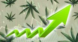 marijuana stocks to buy now