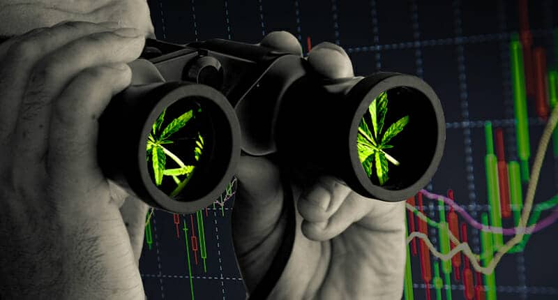 marijuana stocks to buy sell ican see