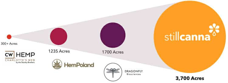 stillcanna size matters