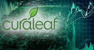 top marijuana stocks 2019 curaleaf CURA CURLF