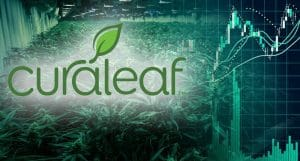 Top Marijuana Stocks 2019 Curaleaf CURA CURLF 300x161