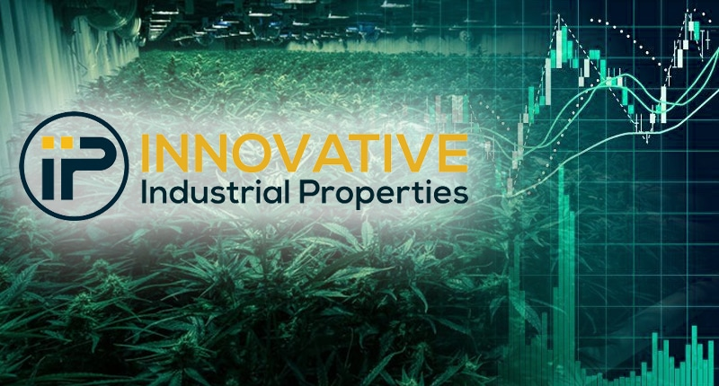 top marijuana stocks 2019 innovative industrial properties IIPR