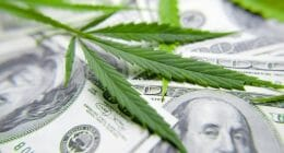 make money marijuana stocks