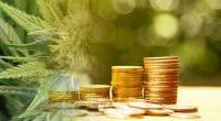 how to buy marijuana stocks