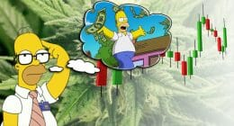 how to make money with marijuana stocks