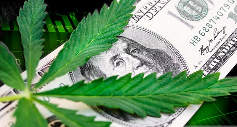 marijuana stocks news