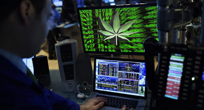 marijuana stock brokers