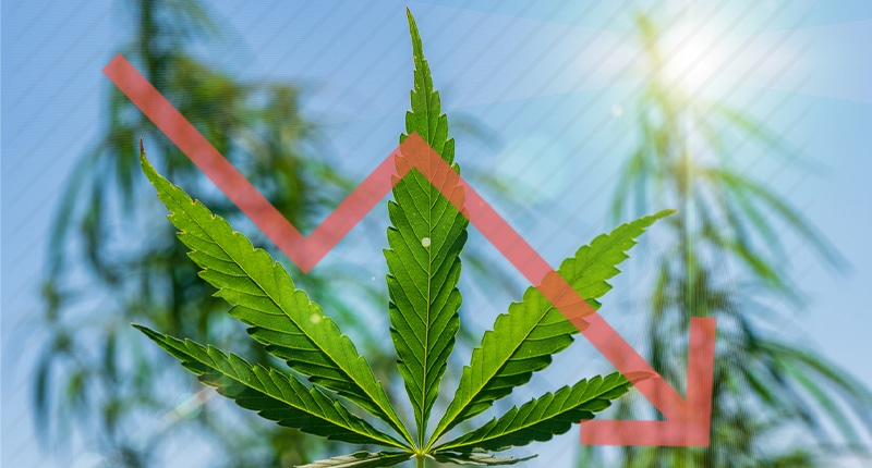 These Marijuana Stocks To Watch Are At Low Prices