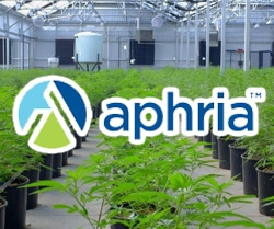 marijuana stocks on Robinhood Aphria Inc. (APHA)
