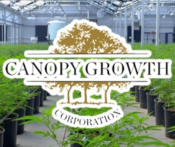 marijuana stocks on robinhood Canopy Growth (CGC)