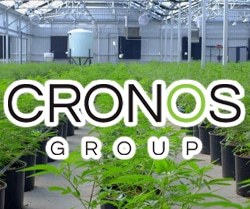 marijuana stocks on robinhood Cronos Group (CRON)