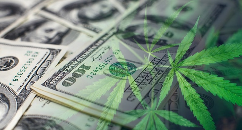 marijuana stocks to buy now