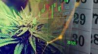 marijuana stocks to watch 2020