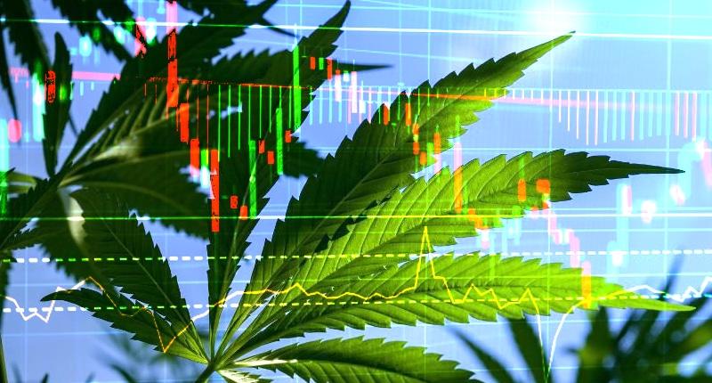 marijuana stocks to watch now