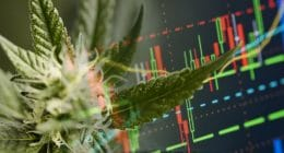 marijuana stocks to watch today