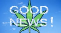Good News Pot Stocks
