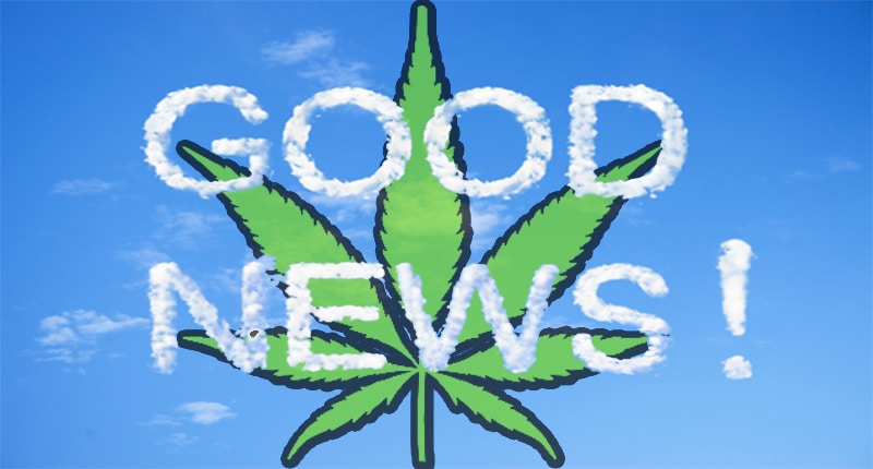 Good News Pot Stocks