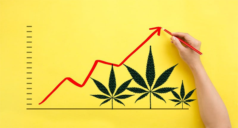 Pot stocks month