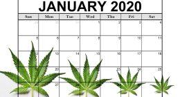 january stock list