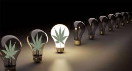 pot stock lights