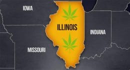illinois pot stocks