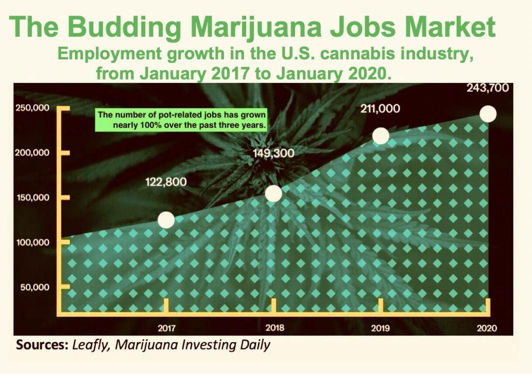 marijuana jobs cannabis stocks
