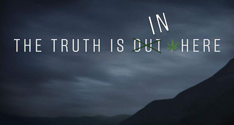 marijuana stocks truth pot stocks