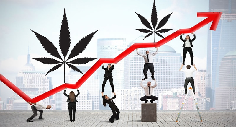 Will These Pot Stocks Be the First to Hit $1 Billion in Sales?
