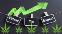 pot stocks expectations