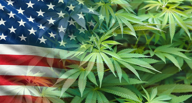 How Can The Legal Cannabis Industry Can Help The US Economy Flourish?