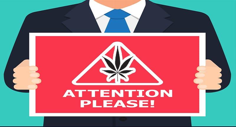 attention pot stocks