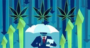Marijuana Stock June Gloom