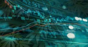 Marijuana Stock Next Week