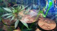 Marijuana stocks july