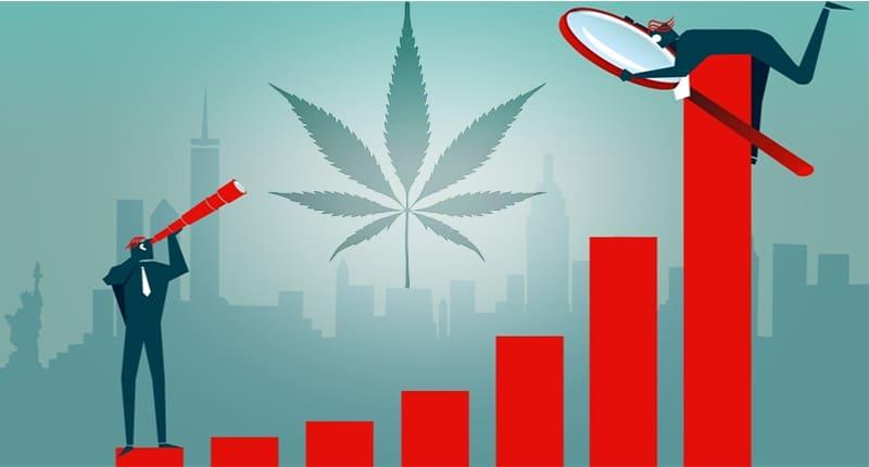 Marijuana stock long term