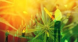 Marijuana stocks summer