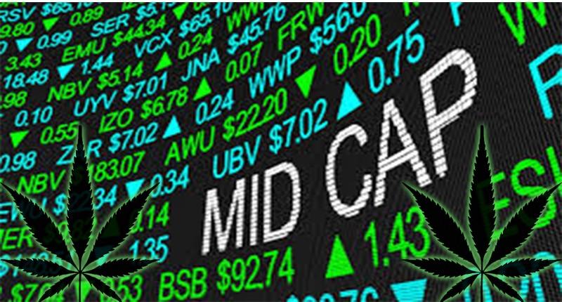 Mid Cap Marijuana Stocks