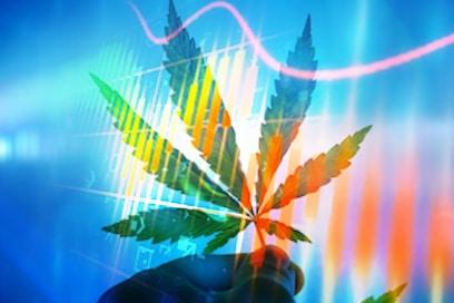 Top Marijuana Stocks To Watch In September 2020