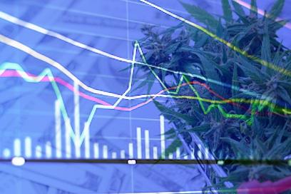 Marijuana Stocks To Watch To Start The Week