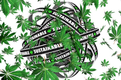 Are These NYSE and NASDAQ Marijuana Stocks Ready to Boom?