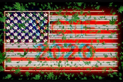 2020 Election US marijuana stocks