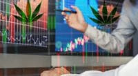 Best Pot Stocks To Buy