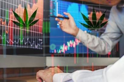 Best Pot Stocks To Buy
