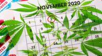 Election Legalize Marijuana